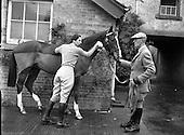 1958 - 18/11 Goffs November Sales, Ballsbridge