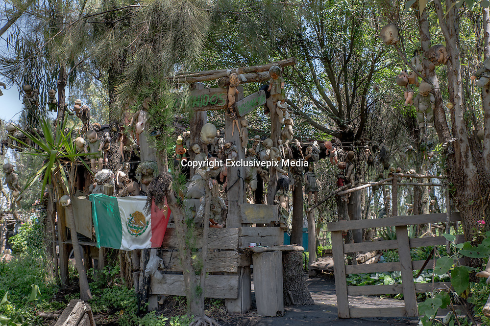 Enter Mexico's haunted 'Island of the Dolls' if you dare: Thousands of creepy toys hang from the trees to quell the tormented screams of a ghost of a little girl who drowned there<br /> <br /> Hundreds of photographers and thrill-seekers travel to the haunted Island of the Dolls every year, but it was never meant to be a tourist attraction. After a two-hour canal ride from Mexico City, they arrive at a nightmarish clearing deep in the woods where thousands of mutilated dolls hang from the trees and hide among the dense branches.<br /> They were put there by a reclusive Mexican man who believed they would appease the troubled ghost of a small girl who died there over 50 years ago - and still haunts the woods today.<br /> Julian Santana Barrera retreated to the woods soon after she drowned in the nearby canal. He claimed he could hear her tormented screams and footsteps in the darkness.<br /> Even today - 14 years after his own mysterious death in those woods - visitors say they hear whispers in the night and feel the dolls' eyes following them through the trees.<br /> <br /> Barrera found the girl's corpse floating in the canal and blamed himself for not being able to save her life, according to the so-called&nbsp;Isla de las Munecas' official website.<br /> He later discovered a doll floating in the same waters and, assuming it belonged to the deceased girl, hung it from a tree as a sign of respect.&nbsp;His descent into madness began with this seemingly innocent act.&nbsp;<br /> Barrera began to hear whispers, footsteps and the anguished wails of a woman in the darkness even though his hut - hidden deep inside the woods of Xochimilco - was miles away from civilisation.<br /> Driven by fear, he hung the dismembered toys from the trees to protect himself from her ghost and spent the next 50 years 'decorating' the woods in a desperate attempt to appease her.<br /> He hung hundreds of toys - some missing body parts - from the trees and the wire fencing which surrounded