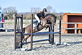 11 - 17th Feb - Show Jumping