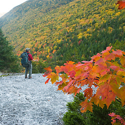 Taking in the view from the Appalachian Trail in Maine's Grafton Notch State Park. MR