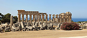 Ruins of Temple F, built 550-540 BC, on the East Hill of the ancient ruined Greek city of Selinunte, Sicily, Italy. It originally had a 6 x 14 column peristyle with unique painted stone screens between the columns, and an internal portico. Behind is Temple E or Temple of Hera, built 460-450 BC, with a 6 x 15 Doric column peristyle with several staircases and traces of stucco and friezes. It was rebuilt 1956-59. Selinunte was founded in 628 BC and was an important Greek colony, home to up to 100,000 people at its peak and abandoned in 250 BC. The city consists of an acropolis housing 2 main streets and 5 temples, 3 other hills with housing and temples and 2 necropoleis. Picture by Manuel Cohen