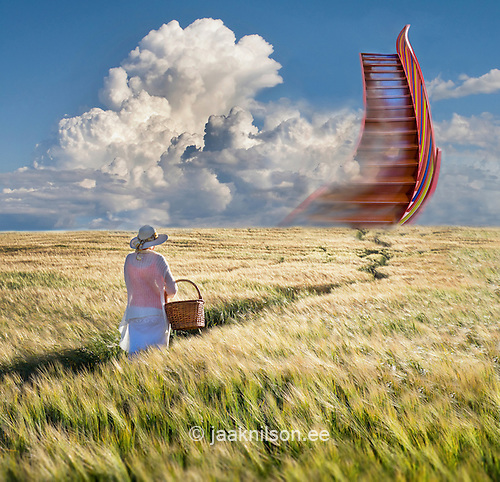 Woman Walking In Cornfield Holding Picnic Basket. Stairway To Heaven.  Conceptual, Fantasy,