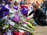 "22 APRIL 2016 - MINNEAPOLIS, MN:  A woman lays flowers at a memorial for Prince in front of 1st Ave in Minneapolis. Thousands of people came to 1st Ave in Minneapolis Friday, to mourn the death of Prince, whose full name is Prince Rogers Nelson. 1st Ave is the nightclub the musical icon made famous in his semi autobiographical movie ""Purple Rain."" Prince, 57 years old, died Thursday, April 21, 2016, at Paisley Park, his home, office and recording complex in Chanhassen, MN.   PHOTO BY JACK KURTZ"