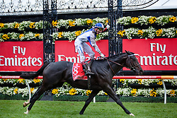 Gerald Mosse punches his fist in the air in celebration after winning the 2010 Melbourne cup at Flemington Race Course in Melbourne Australia
