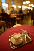 "A ""melange"" at Cafe Hummel, a traditional Viennese coffee shop."