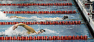 Indian Hill senior Margaret Fish (top) defeated Arcanum sophomore Lynsie Farrel (bottom) in the 200 yard individual medley during the Girls Division II District Swimming Tournament at the Corwin Nixon Natatorium at Miami University, Saturday, February 16, 2008.