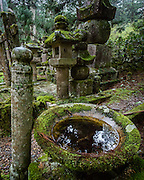 A water basin in the middle of old tombs at Okunoin Cemetery.