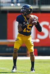 September 17, 2011; San Francisco, CA, USA;  California Golden Bears quarterback Zach Maynard (15) warms up before the game against the Presbyterian Blue Hose at AT&T Park.  California defeated Presbyterian 63-12.