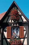 Deutschland, Germany,Baden-Wuerttemberg.Schwarzwald.Gengenbach, Fachwerkgiebel, Gartenzwerge am Fenster.Gengenbach, garden gnomes at window...