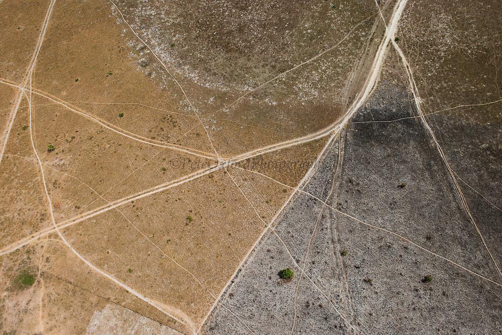 Dirt Road<br /> Savanna <br /> Rurununi<br /> GUYANA<br /> South America