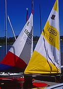AT5CG9 Sails of sailing dinghy boats River Deben Woodbridge Suffolk