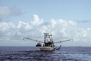 "Back Of Shrimp Boat In Bay-Easy Dose It ""East Dose It"""