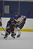 Game 1 - Minnesota Blue Ox Vs St Louis Blues