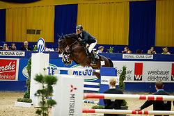 Knippling, Andreas (GER) Tannenhof´s Chacco Chacco<br /> Dortmund - Signal Iduna Cup 2017<br /> © Stefan Lafrentz