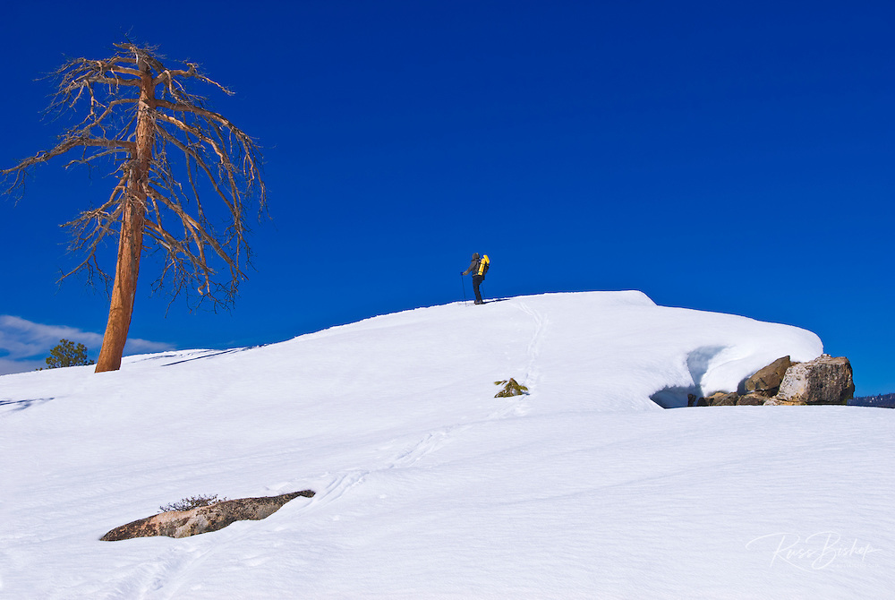 Backcountry skier at Taft Point, Yosemite National Park, California
