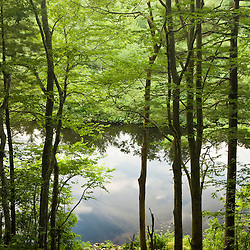 Indian Head River as seen through the forest at the Tucker Preserve in Pembroke, Massachusetts.