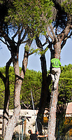 VILAMOURA - Algarve - Oceanico MILLENNIUM Golfcourse, hole 4.   COPYRIGHT KOEN SUYK