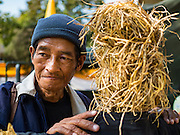 09 DECEMBER 2015 - BANGKOK, THAILAND:  A Thai farmer with a straw man representing non GMO crops during a rally in Bangkok. About 50 environmental activists met near Government House in Bangkok to protest against the Biological Safety Bill being debated in the Thai legislature. The bill will allow use of genetically modified organisms (GMOs) for commercial purposes. Political gatherings of more than five people are prohibited by the military government and the protestors were not allowed to march to Government House or directly confront legislators.    PHOTO BY JACK KURTZ