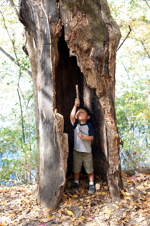 Holden Miller, 4, shakes a stick at a pretend ghost that he believes lives up in the hollow of this weathered tree at Indian Lake, a Dane County park west of Madison, Wis., during autumn on Oct. 8, 2011.
