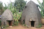 Africa, Ethiopia, Omo region, Chencha, Dorze Village Traditional elephant shaped straw hut