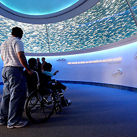 Visitors experience an exhibit at the Monterey Bay Aquarium, which is located on Cannery Row in Monterey, California, on Friday July 13, 2012.(AP Photo/Alex Menendez)