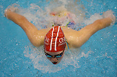 20140814 Collge Swimming -  Huia Cup Relays