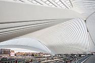 Europe, Belgium, Liege, railway station Liege-Guillemins, architect Santiago Calatrava<br /> <br /> Europa, Belgien, Luettich, Bahnhof Luettich-Guillemins, Architekt Santiago Calatrava.