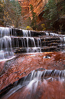 The North Fork of the Virgin River slowing cascades its way over the steps of Archangel Falls near The Subway in Zion National Park.