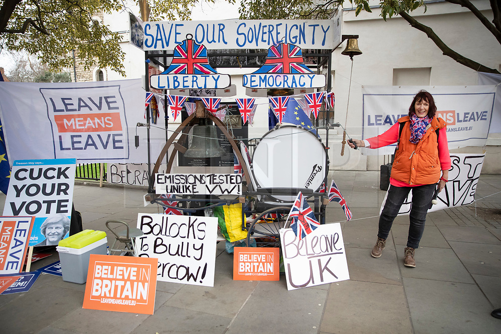 DATE CORRECTION © Licensed to London News Pictures. 15/01/2019. London, UK.  A pro-Brexit demonstrator stands by her barrow bedecked with drums and flags in Westminster, London, on the day that MP's will vote on British Prime Minster Theresa May's proposed withdrawal agreement with the European Union. Photo credit: Peter Macdiarmid/LNP