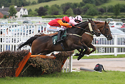 Regulation ridden by Trevor Whelan (L) in action during the 3.00 The bet365 Handicap Hurdle race - Mandatory by-line: Jack Phillips/JMP - 26/06/2016 - HORSE RACING - Uttoxeter Racecourse - Uttoxeter, England - John Smith's Summer Cup