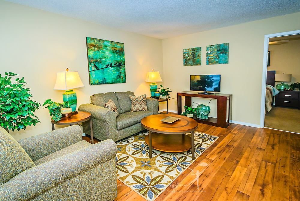 A furnished living room is shown at Robinwood Apartments, June 11, 2015, in Mobile, Alabama. The one-bedroom apartments, located on Old Shell Road, are managed by Sealy Realty. (Photo by Carmen K. Sisson/Cloudybright)