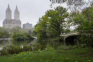 The Lake and Bow Bridge in Central Park with a view of the San Remo apartment towers.