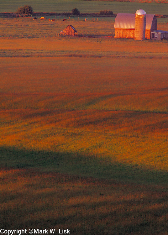 Rolling wheat fields seem like a velvet carpet in Idaho's palouse country.