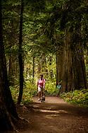 Ross Creek Cedars Scenic Area, Montana, Western Red Cedars, tourists, women, dogs