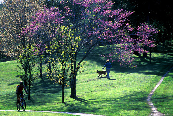 Stock photo of a bicyclist and a woman walking a dog at the Buffalo Bayou Hike and Bike Trails in Buffalo Bayou Park