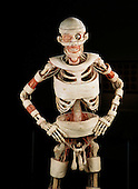 Body Worlds Plastination