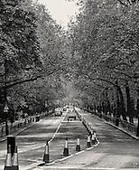 Birdcage Walk in London.