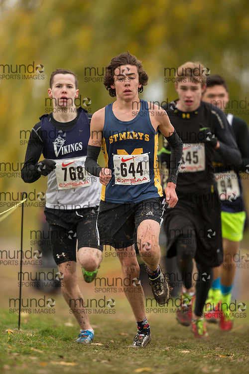 Liam Donnelly of &quot;St. Mary, Hamilton&quot; competes at the OFSAA Cross Country Championships in Waterloo Ontario, Saturday, November 1, 2014.<br /> Mundo Sport Images/ Geoff Robins