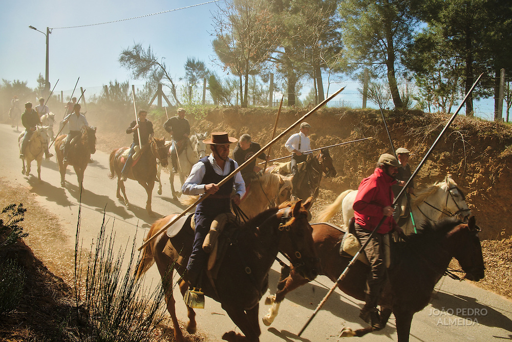 Horsemen leading the bulls to the improvised arena at the village's main square