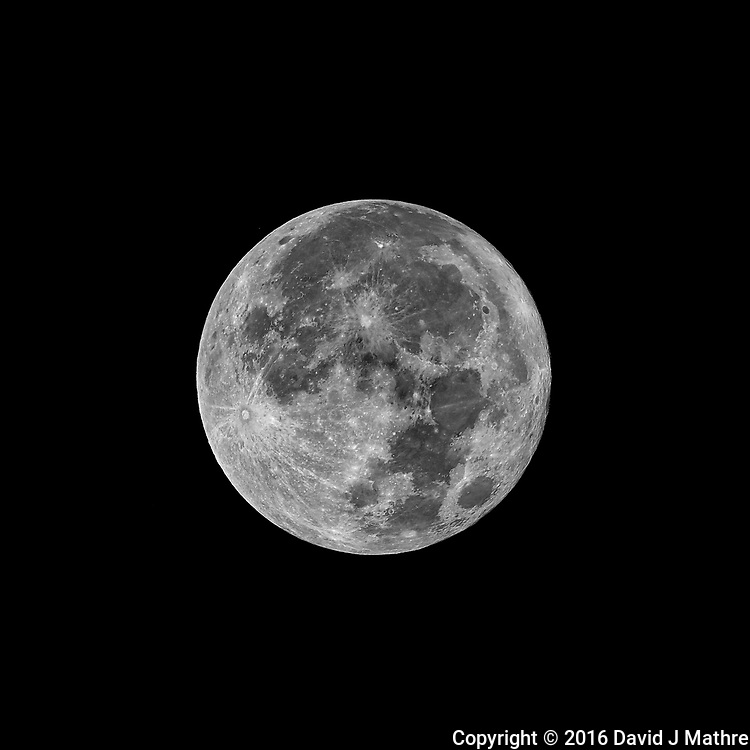 Full Moon. Autumn Nature in New Jersey. Image taken with a Nikon D3x  camera and 600 mm f/4 VR lens (ISO 100, 600 mm, f/5.6, 1/800 sec)