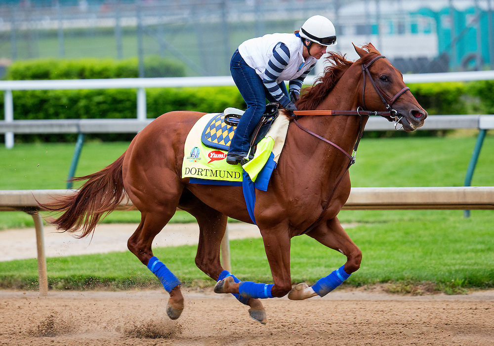 April 30, 2015: Dortmund gallops at Churchill Downs Louisville Ky. Alex Evers/ESW/CSM