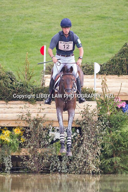 NZL-Tim Price (HADDON TRUMP CARD) INTERIM-24TH: CCI3* CROSS COUNTRY: 2014 GBR-Blenheim Palace International Horse Trial (Saturday 13 September) CREDIT: Libby Law COPYRIGHT: LIBBY LAW PHOTOGRAPHY - NZL