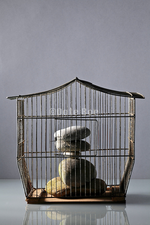 stacked peddles in an birdcage