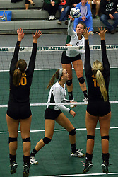 28 October 2016:  Tyler Brown during an NCAA womens division 3 Volleyball match between the DePauw Tigers and the Illinois Wesleyan Titans in Shirk Center, Bloomington IL