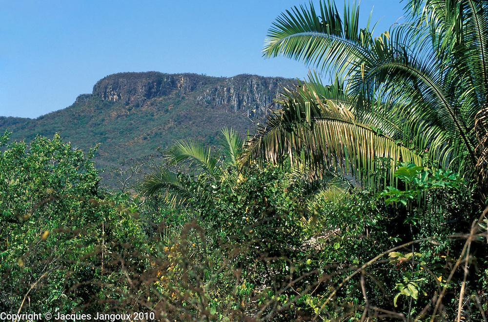 Plateau called chapada dominating wooded savanna vegetation called cerrado in Chapada dos Veadeiros, Brazil Highlands (brazilian shield, planalto brasileiro), Goias, Brazil