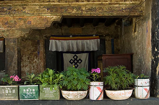 Flower pots outside house in Lhasa, Tibet. Asia.