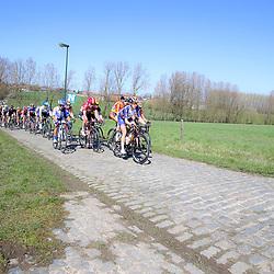 03-04-2016: Wielrennen: Ronde van Vlaanderen vrouwen: Oudenaarde  <br />OUDENAARDE (BEL) cycling  The sixth race in the UCI Womensworldtour is the ronde van Vlaanderen. A race over the famous Flemish climbs. peloton on the Haaghoek