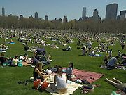 crowds gathering on a grass field on a sunny spring day in Central Park New York USA