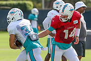 Miami Dolphins quarterback Ryan Fitzpatrick (14) hands off the ball to running back Kenneth Farrow (34) during Minicamp at the Baptist Health Training Facility at Nova Southeastern University, Tuesday, August 6, 2019, in Davie, Fla. (Kim Hukari/Image of Sport)