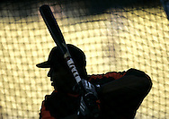 The San Francisco Giants' Barry Bonds takes batting practice before the start of Wednesday's game against the Dodgers Wednesday August 1, 2007..